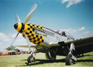 P51 Mustang - Donna-mite